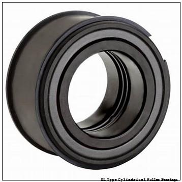 NTN SL01-4876 SL Type Cylindrical Roller Bearings