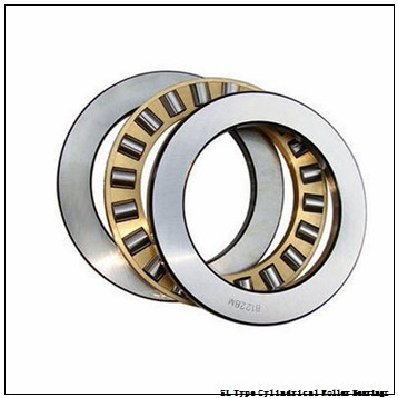 NTN  SL01-4944 SL Type Cylindrical Roller Bearings