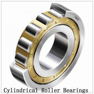 NTN SL02-4920 SL Type Cylindrical Roller Bearings
