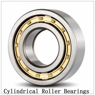 NTN SL01-4960 SL Type Cylindrical Roller Bearings