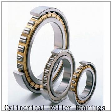 NTN SL02-4972 SL Type Cylindrical Roller Bearings