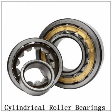 NTN SL01-4838 SL Type Cylindrical Roller Bearings