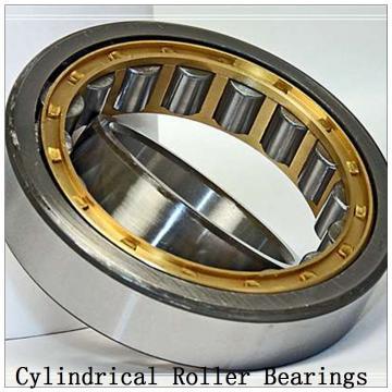 NTN SL01-4980 SL Type Cylindrical Roller Bearings