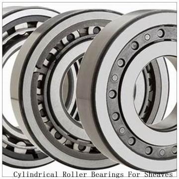 NTN SL04-5020NR SL Type Cylindrical Roller Bearings for Sheaves