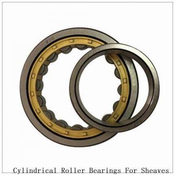 NTN SL04-5030NR SL Type Cylindrical Roller Bearings for Sheaves